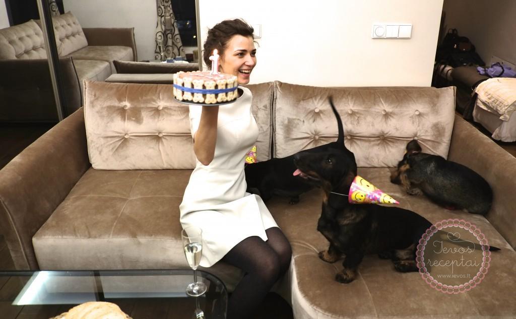 Šuniukai nori torto